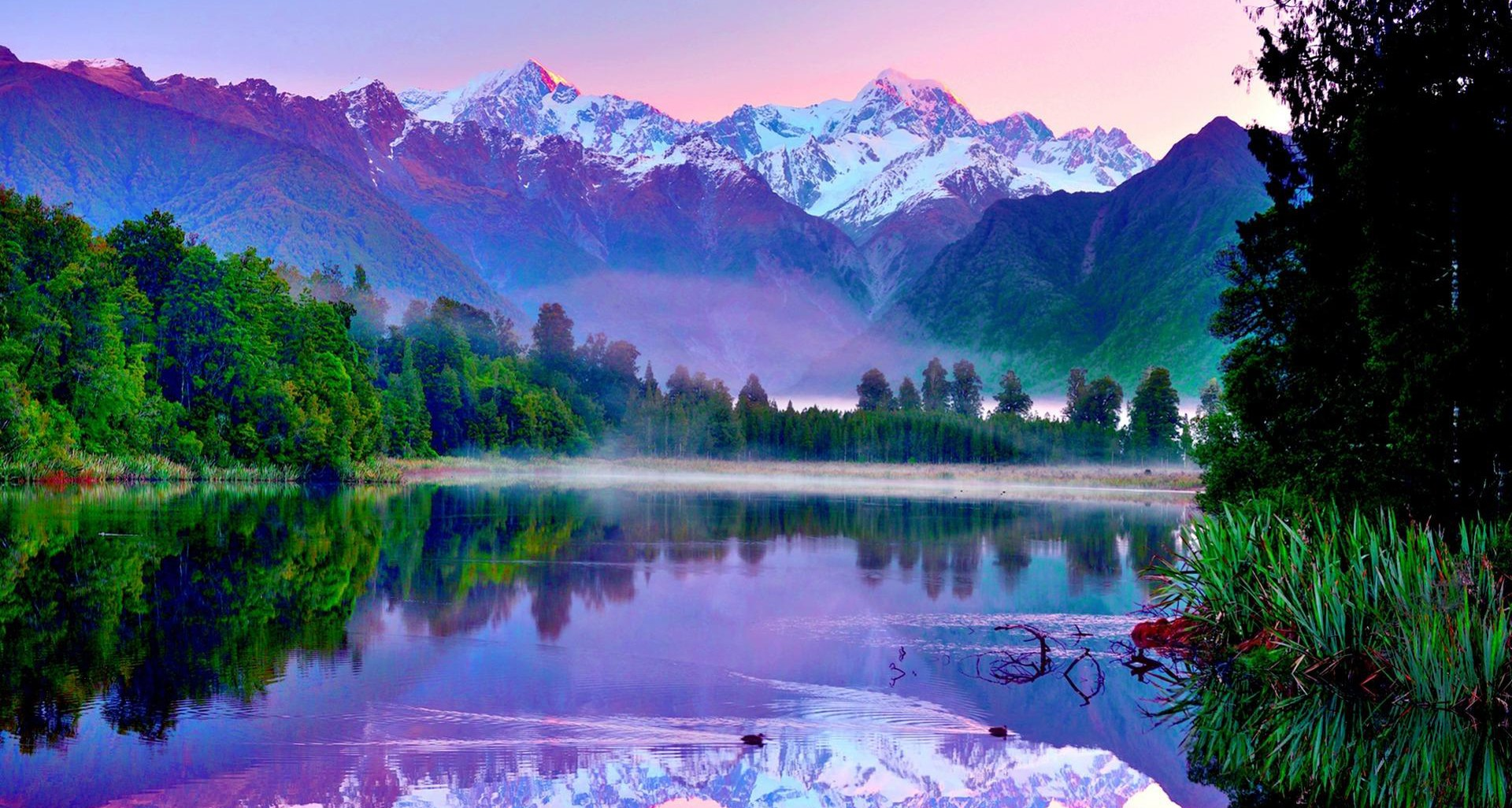 Organic Photos Amazing Nature Wallpapers Green Fresh Iphone 1920x1026