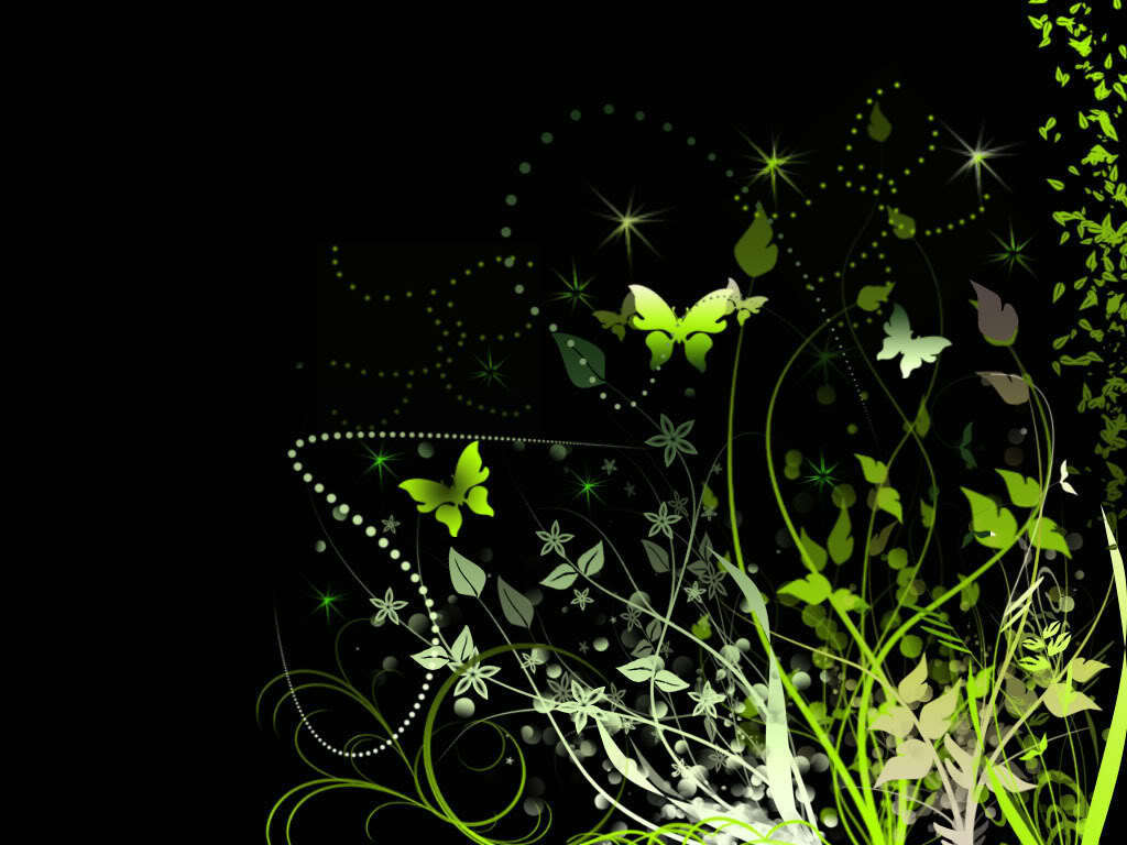 Butterflies At Night   Butterflies Wallpaper 10809099 1024x768