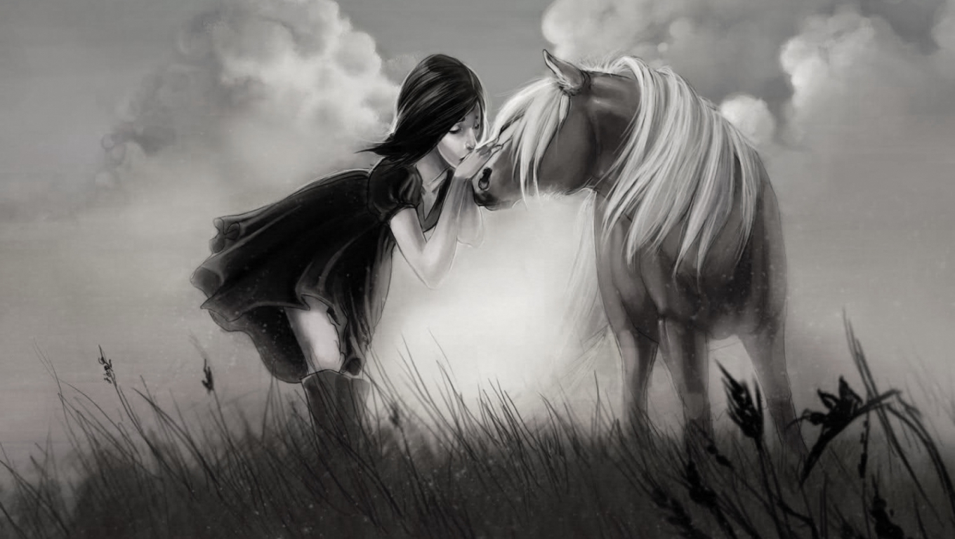 Black And White Horse Wallpaper   HD Wallpapers and Pictures 1360x768