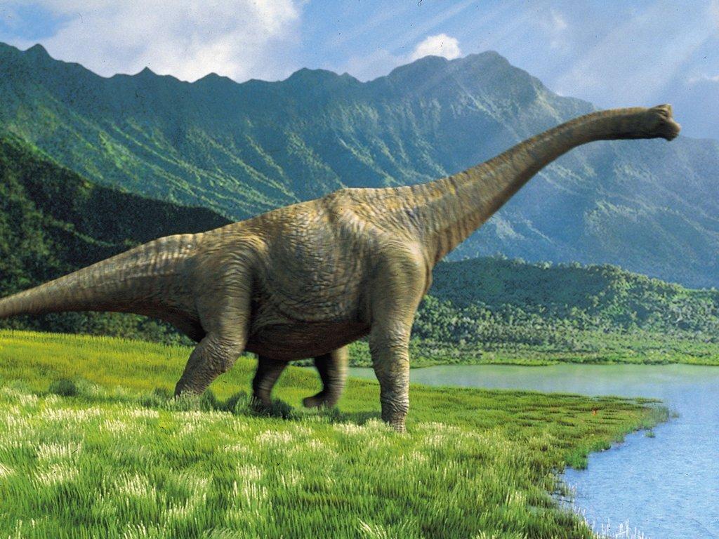 wallpaper animal hd wallpaper dinosaur desktop wallpapers dinosaur 1024x768