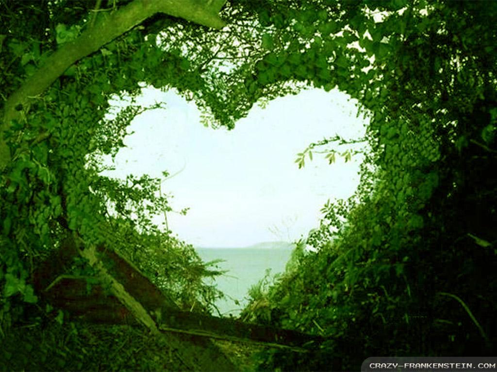 Download Beautiful Love Nature Wallpaper Full HD Wallpapers 1024x768