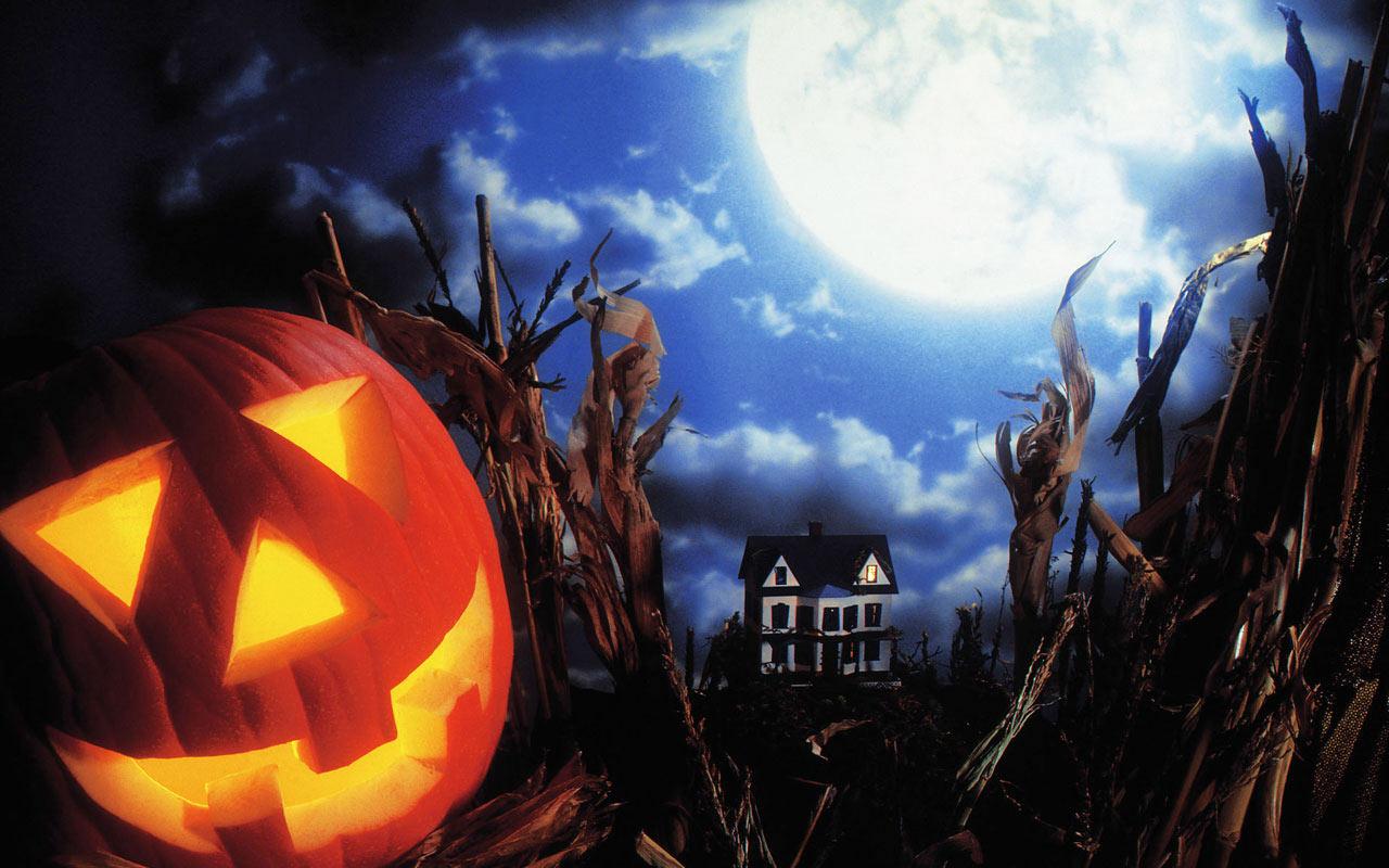 Halloween Wallpaper 4 Wallpaper size 1280x800 1280x800