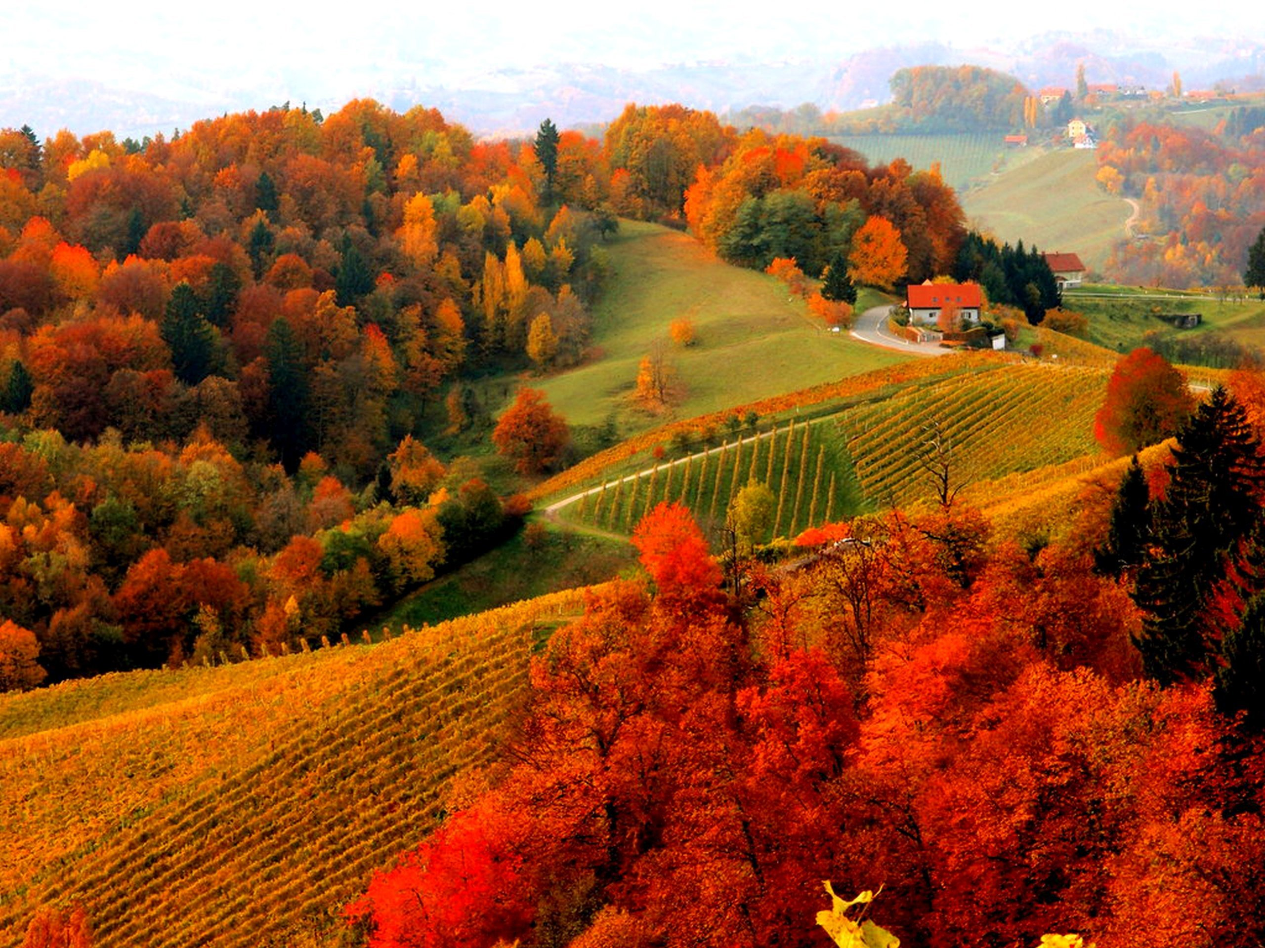 Mountain fall backgrounds