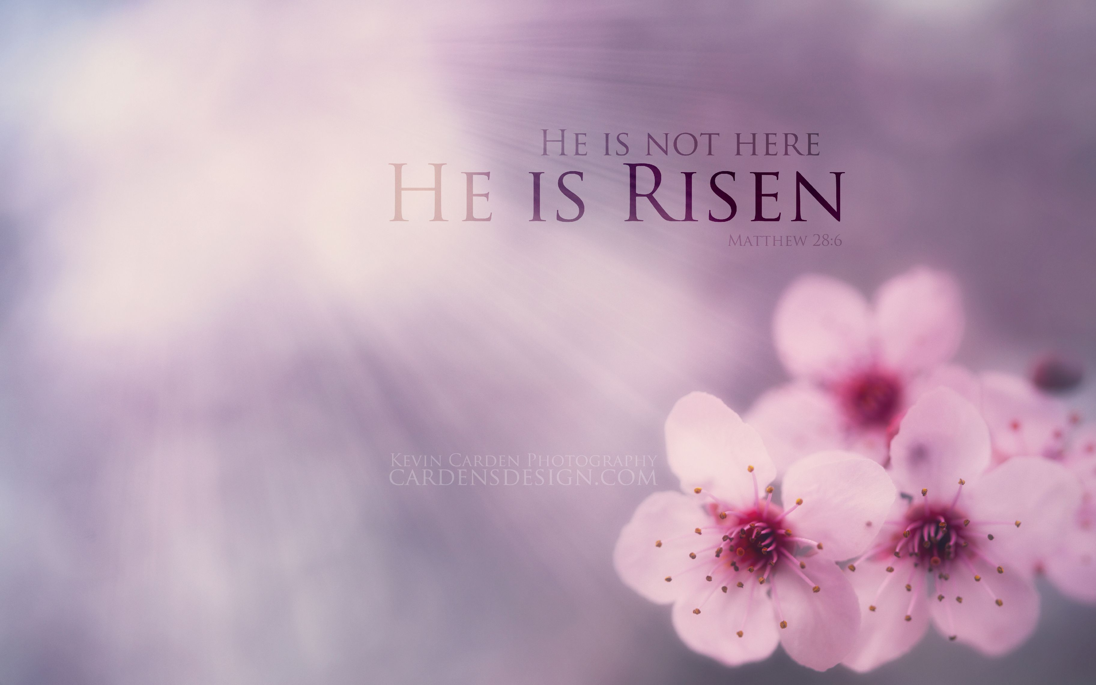 He is risen beautiful wallpaper With Resolutions 36502282 Pixel 3650x2282