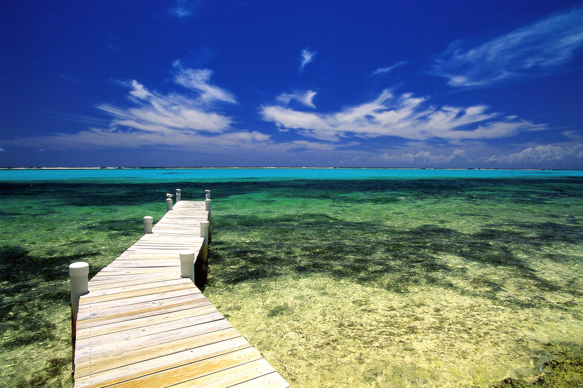 Treasure beach and palms in Jamaica   InfoHostelscom 2000x1333