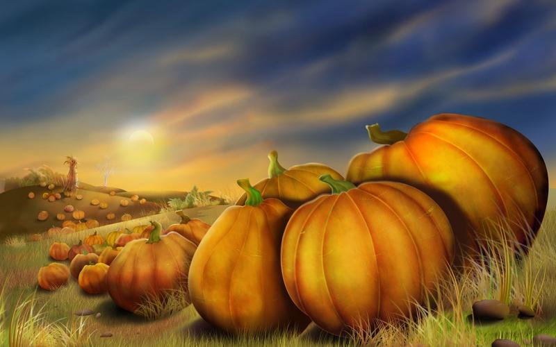 art autumn Pumpkin Field Abstract Fantasy HD Desktop Wallpaper 800x500