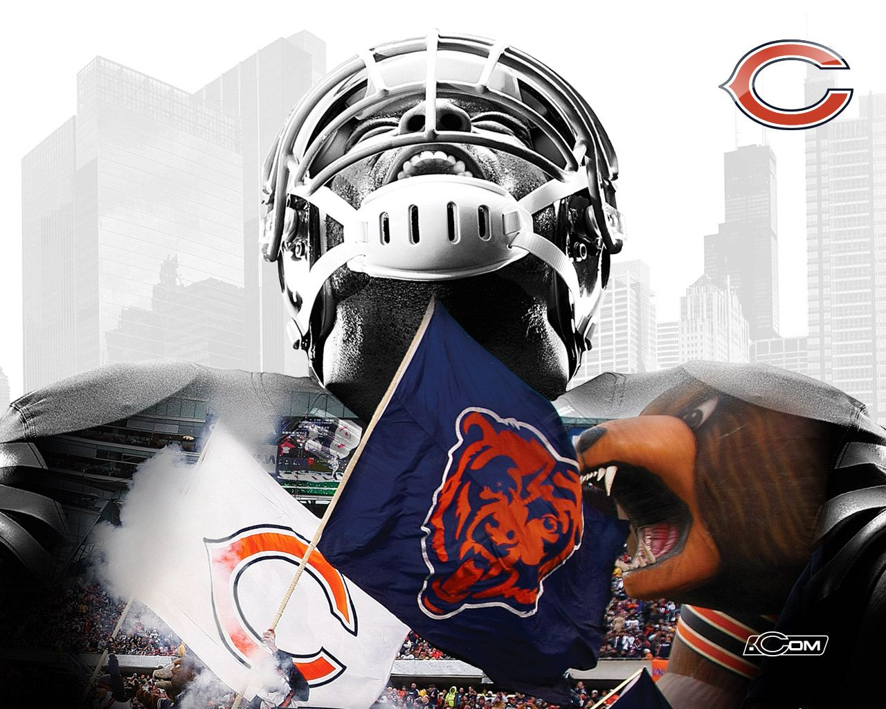 Chicago Bears Wallpapers 2015 1280x1024