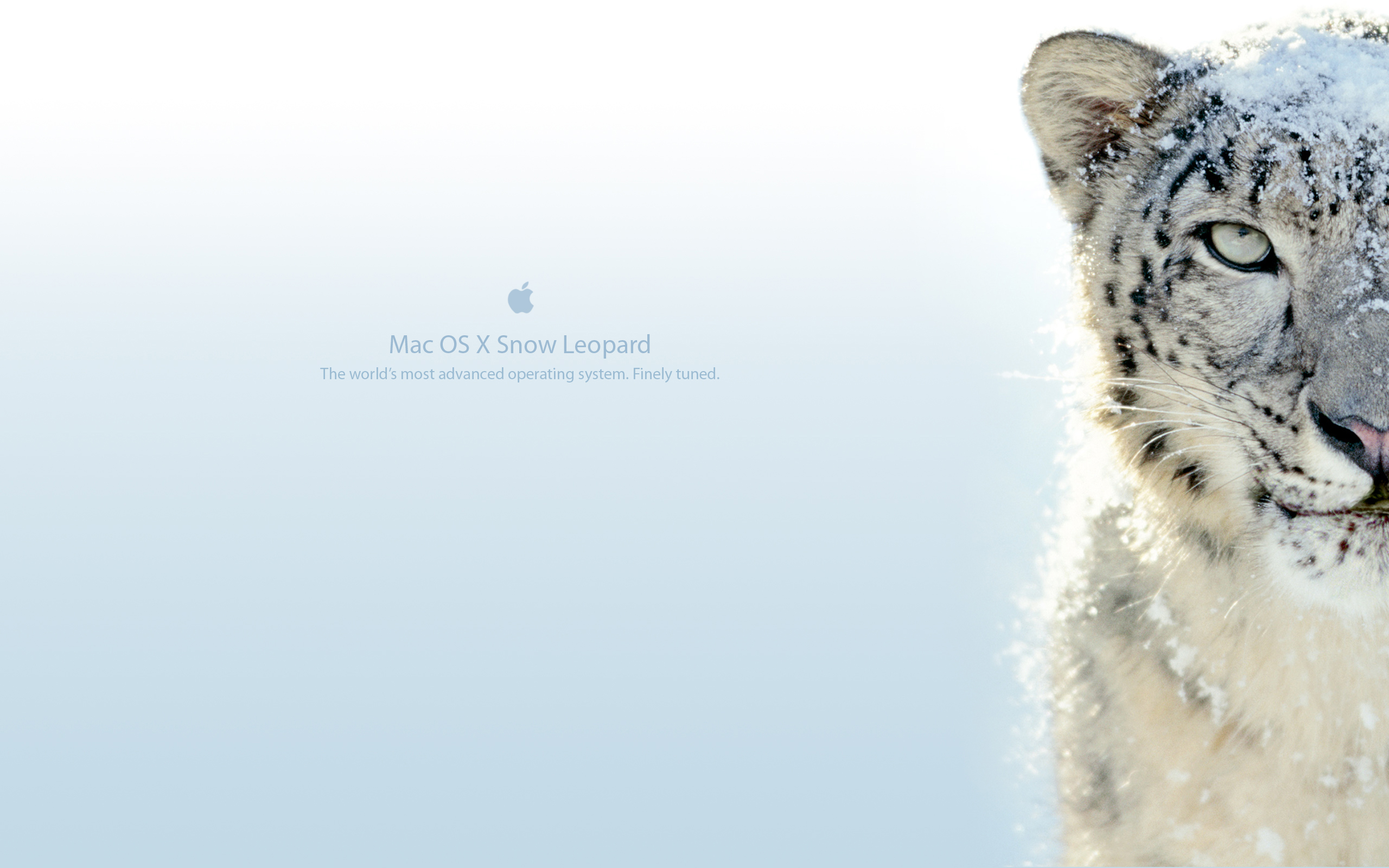 how to download mac snow leopard