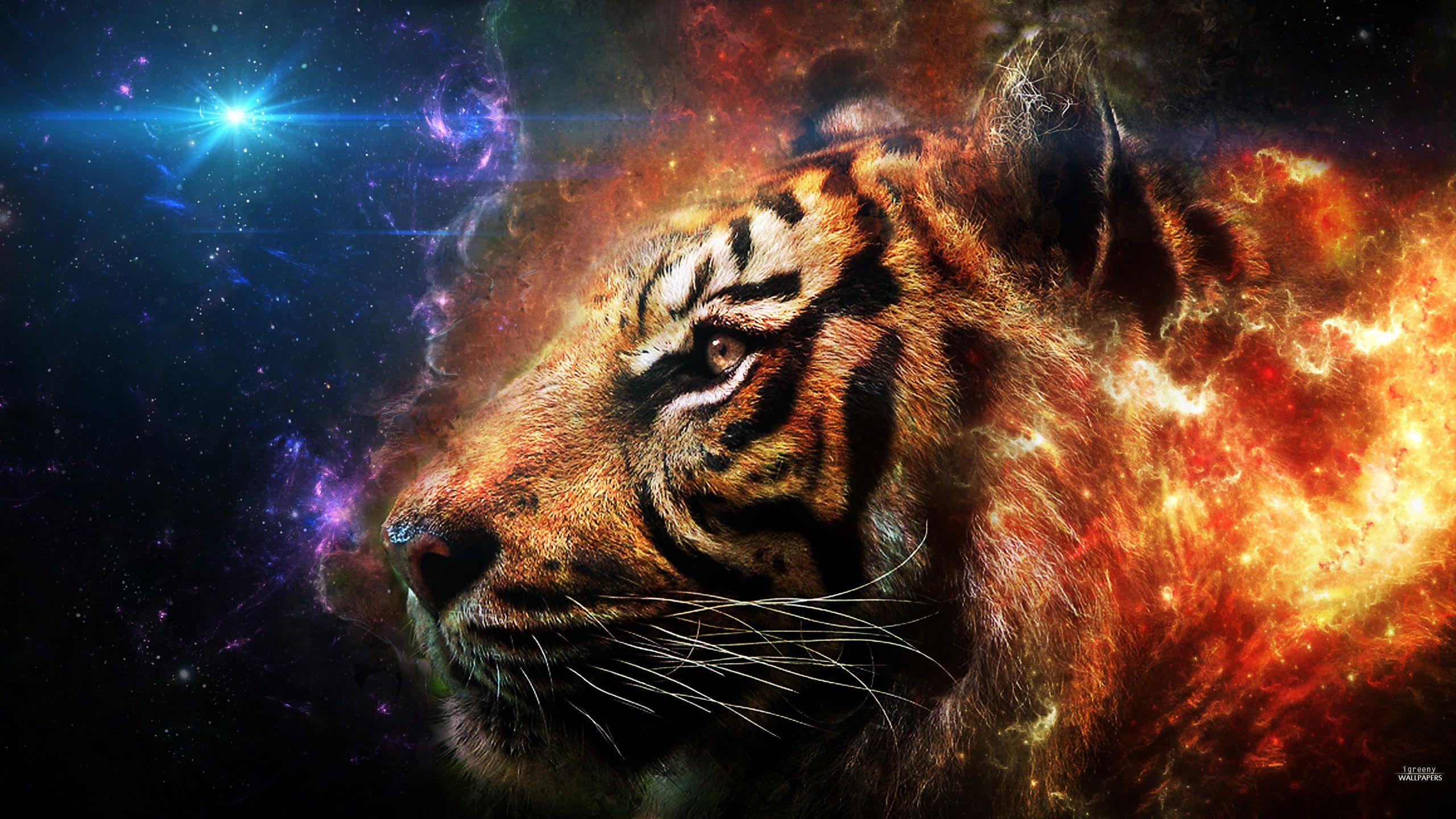 2560 x 1440 wallpaper   Pesquisa Google Tiger wallpaper Pet 2560x1440