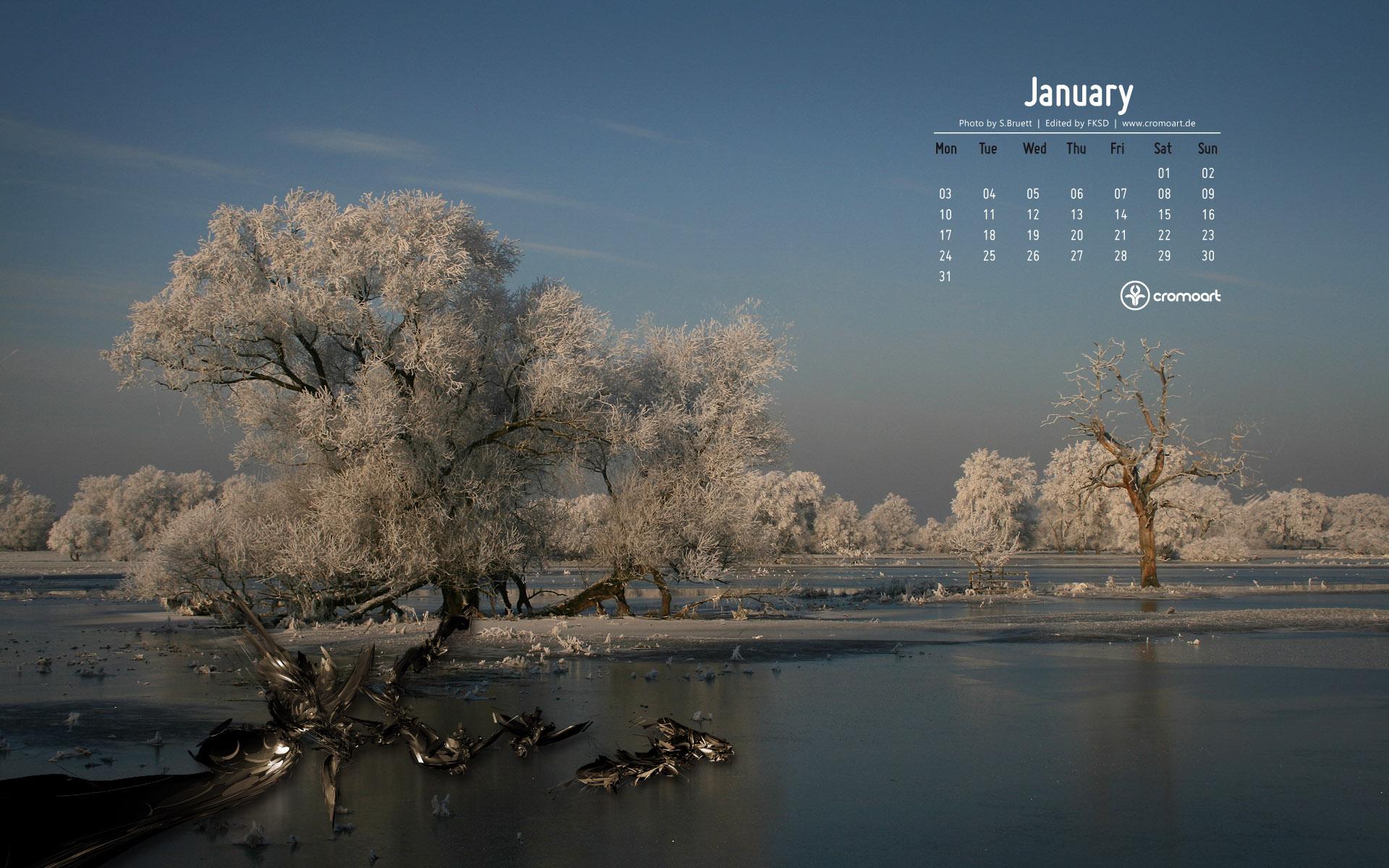 January 2011 Desktop Calendar wallpaper   277378 1920x1200