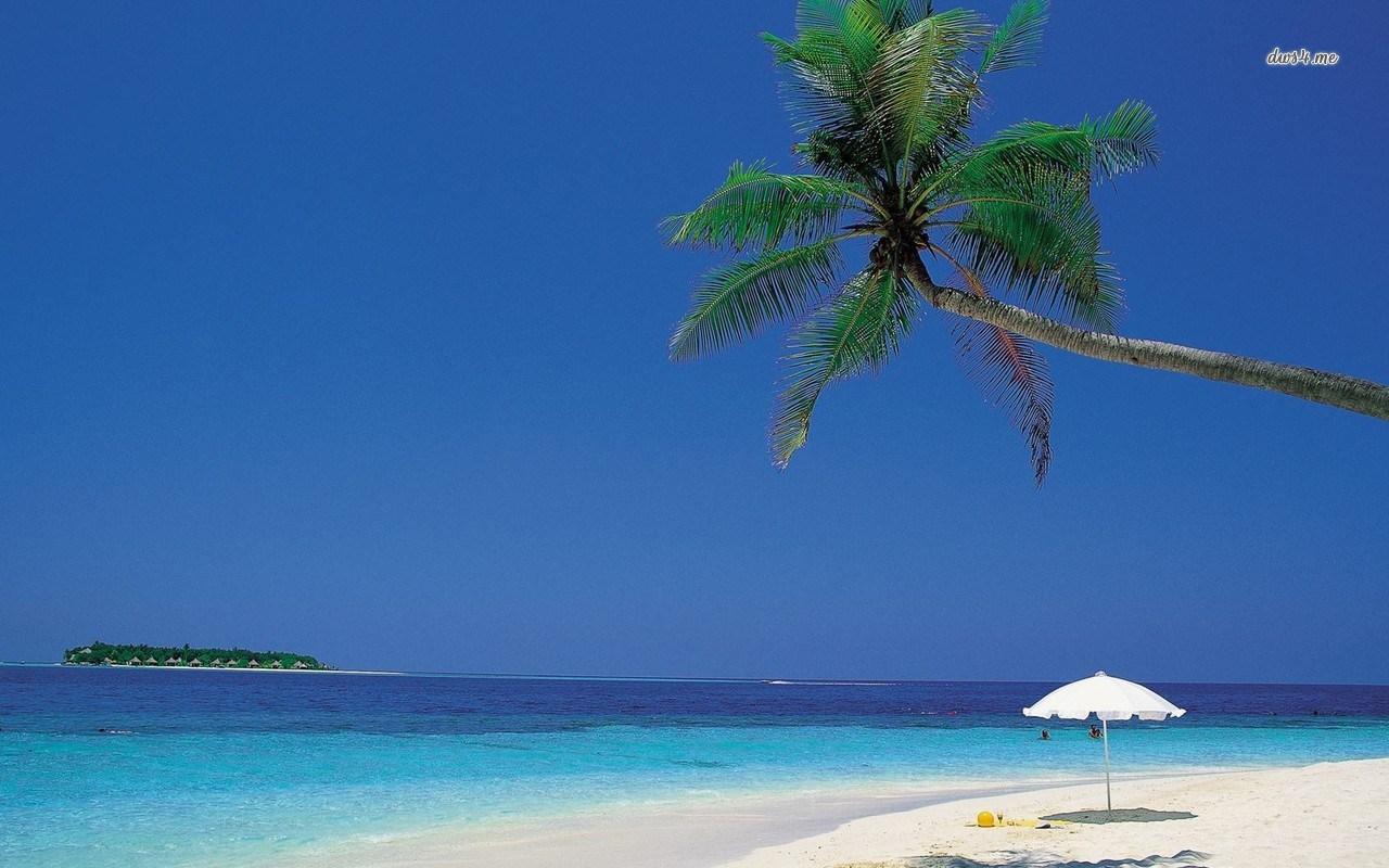 43 caribbean beach desktop wallpaper on wallpapersafari - Caribbean wallpaper free ...