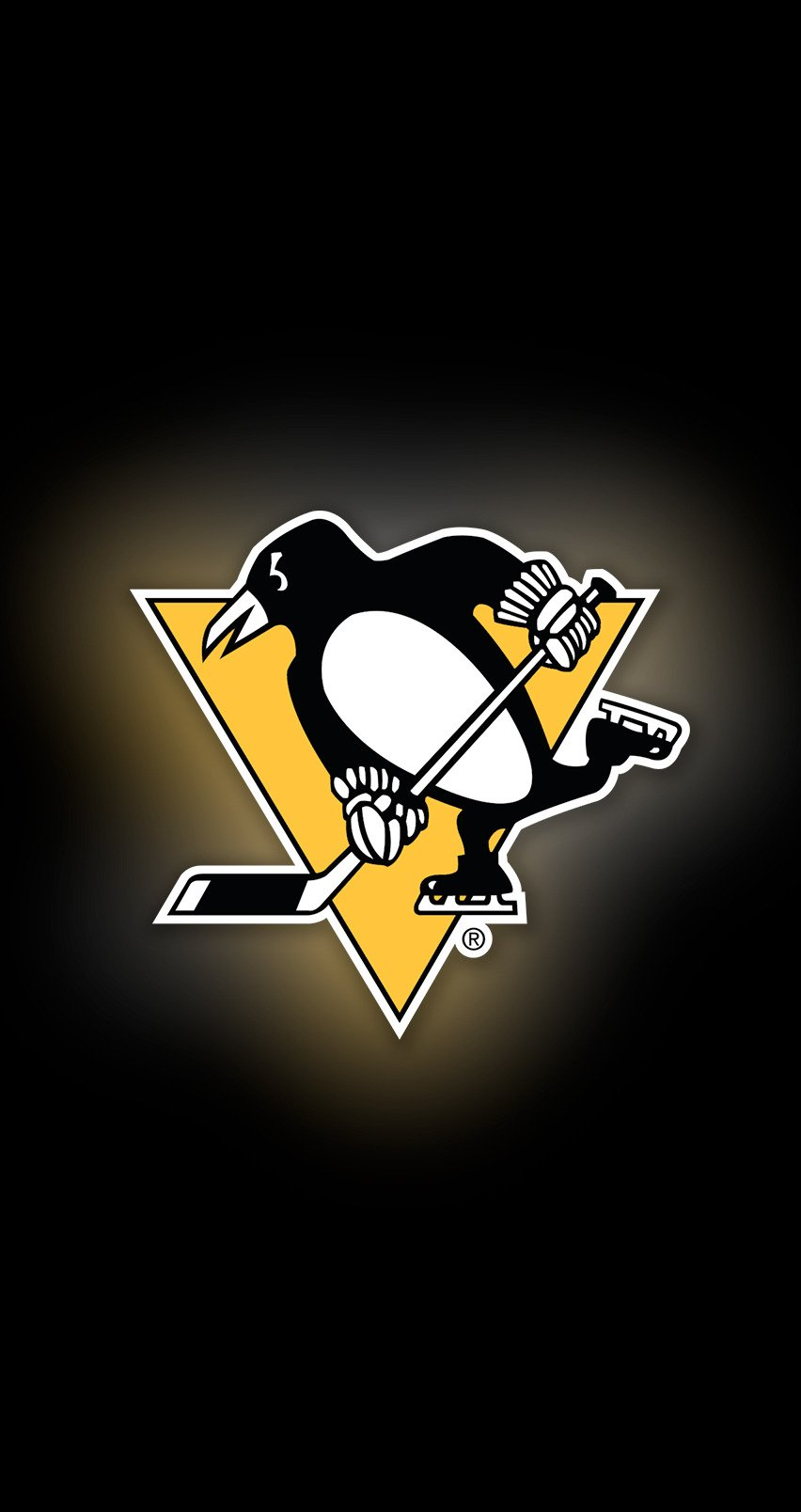 pittsburgh penguins - photo #24