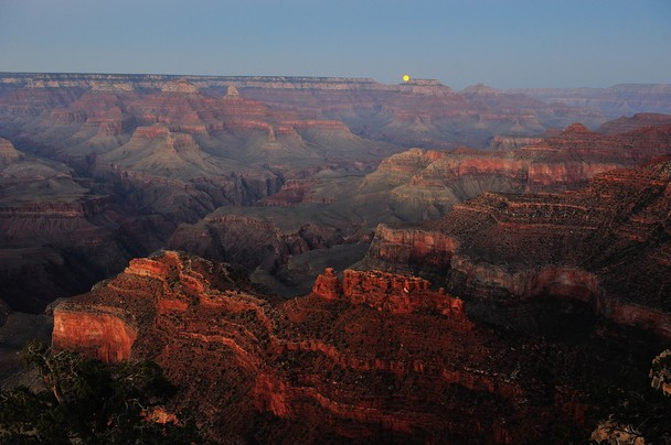 in Grand Canyon   National Geographic Photo Contest 2012   National 608x404