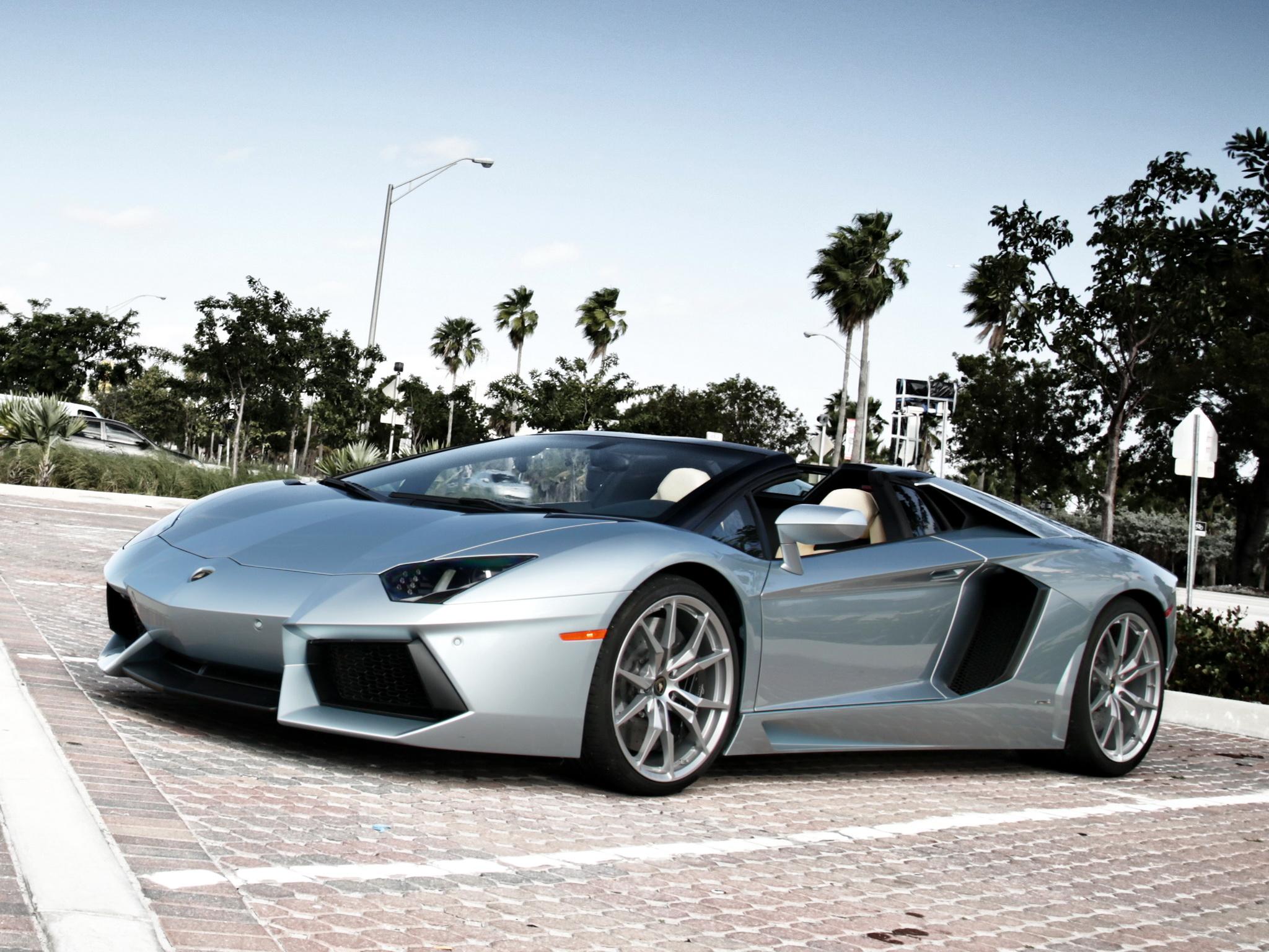 Lamborghini Aventador Roadster supercar silver t wallpaper 2048x1536 2048x1536