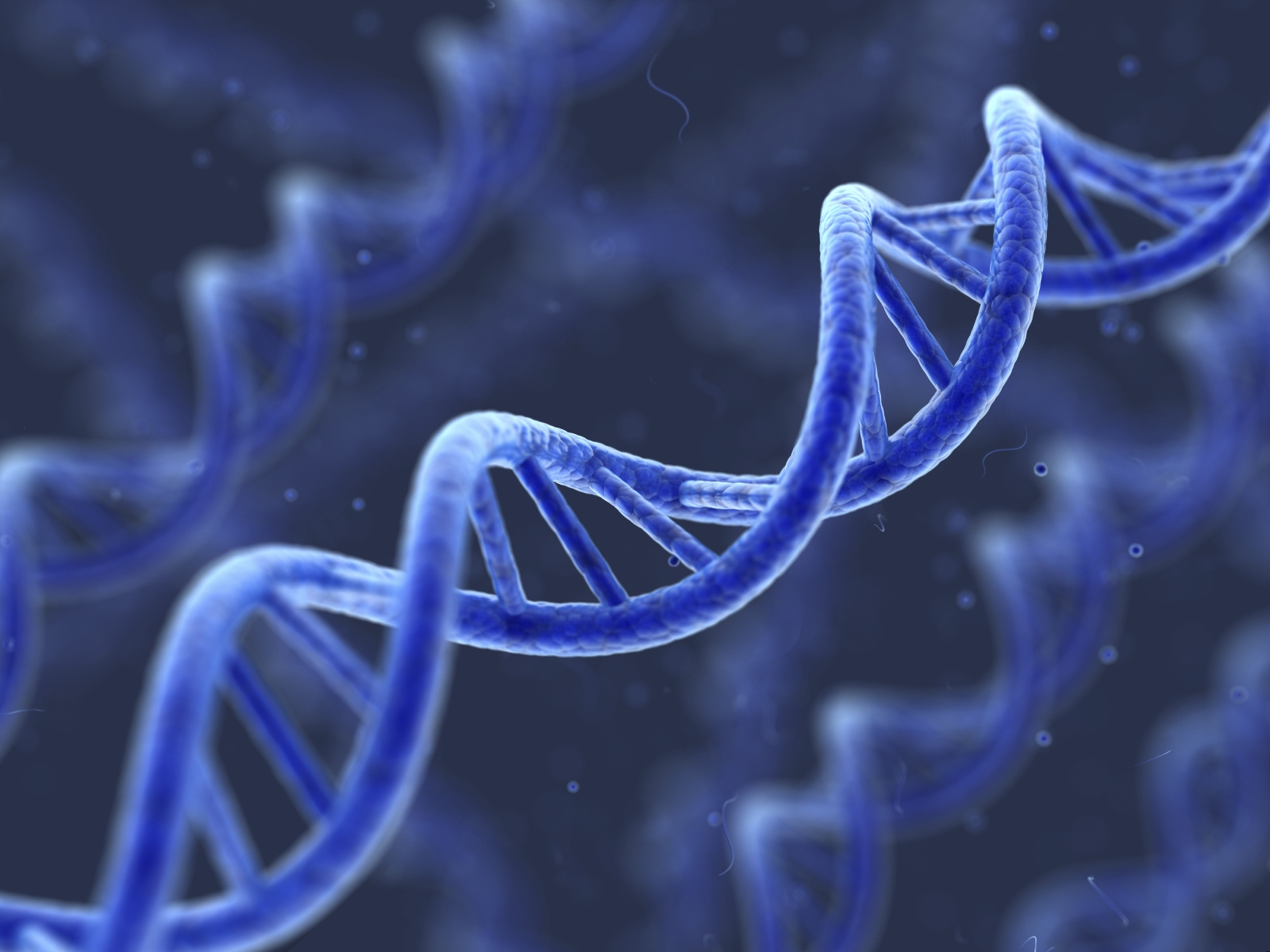 Genetic DNA Computer Wallpaper 50092 1600x1200px 1600x1200