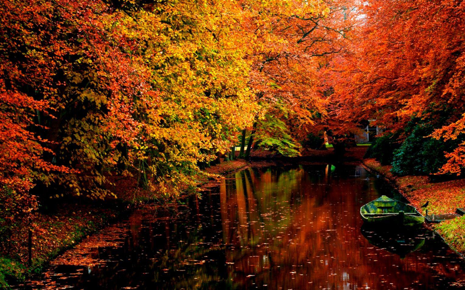 Free Download Autumn Desktop Wallpaper Windows 7 Genius Wallpapers