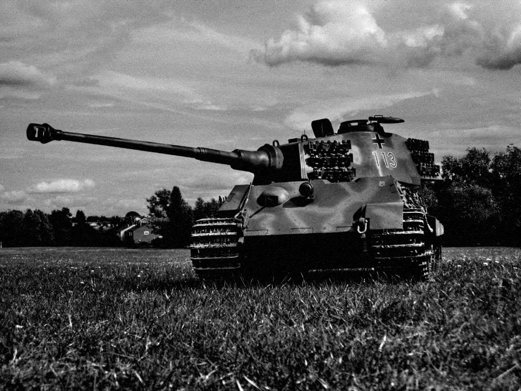 Free download Sharing my 14 RC King Tiger Tank Large Scale