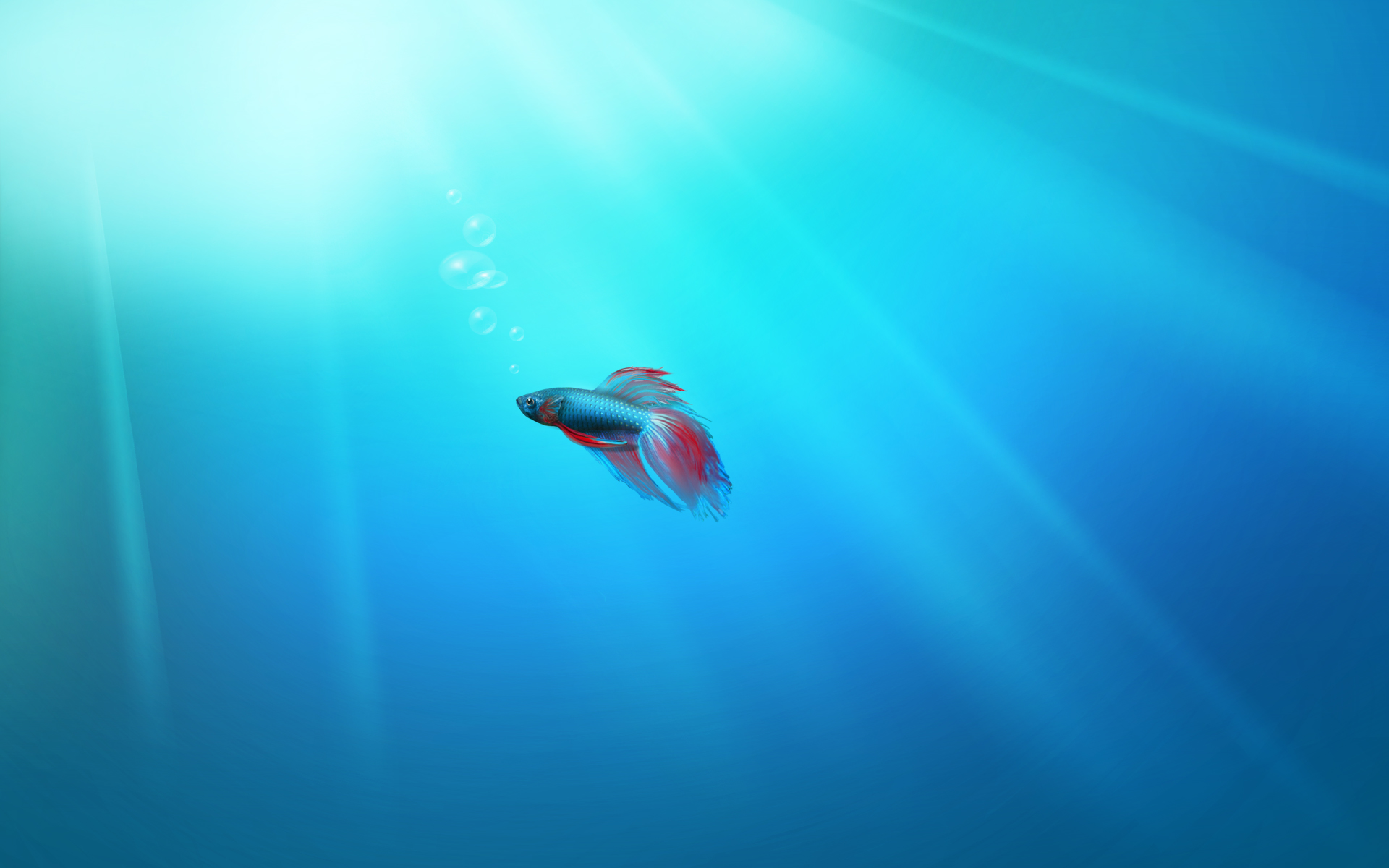 Windows 7 Fish Wallpaper 1920x1200