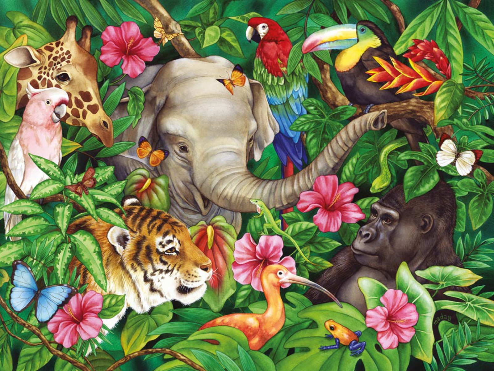 Wall Sticker Pictures Jungle Animal Wallpaper Wallpapersafari