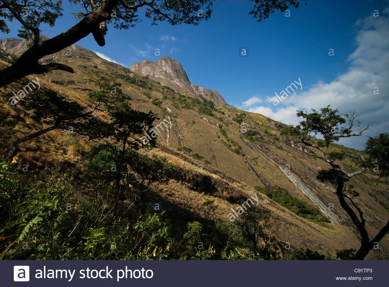 Mulanje Mountain Stock Photos Mulanje Mountain Stock Images   Alamy 1300x960