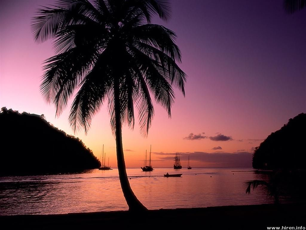 St Lucia Island Nigh View Wallpaper   PhotosJunction 1024x768