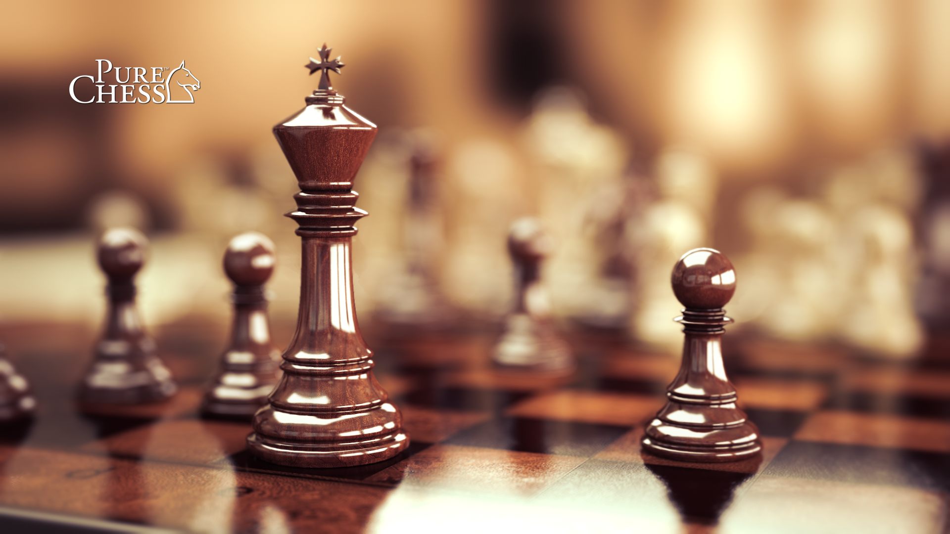Chess Computer Wallpapers Desktop Backgrounds 1920x1080 ID460230