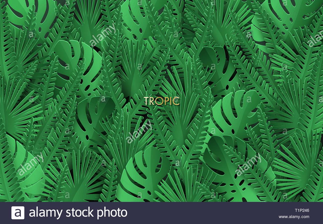 Tropical background with jungle plants Trendy background with 1300x902