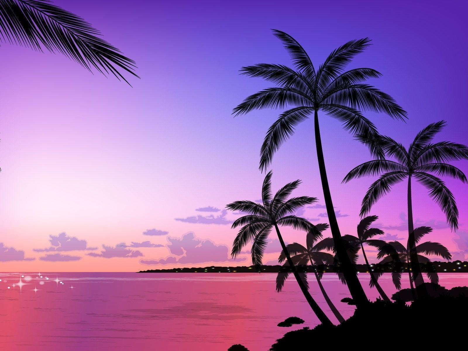 Palm Tree Wallpapers 1600x1200