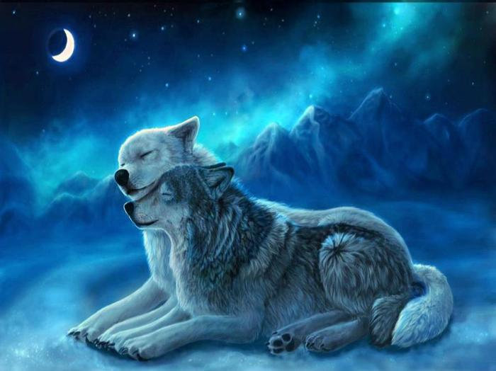 Image Result For Anime Wolf Wallpaper Android