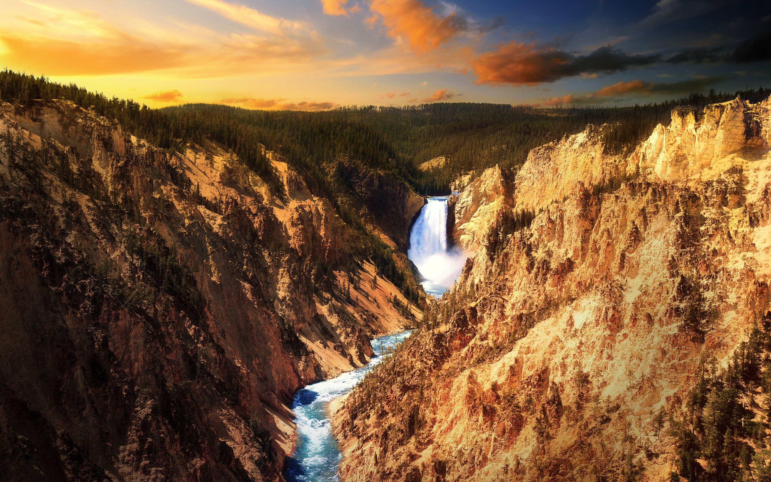 Yellowstone National Park HD Wallpaper Background Image 2560x1600