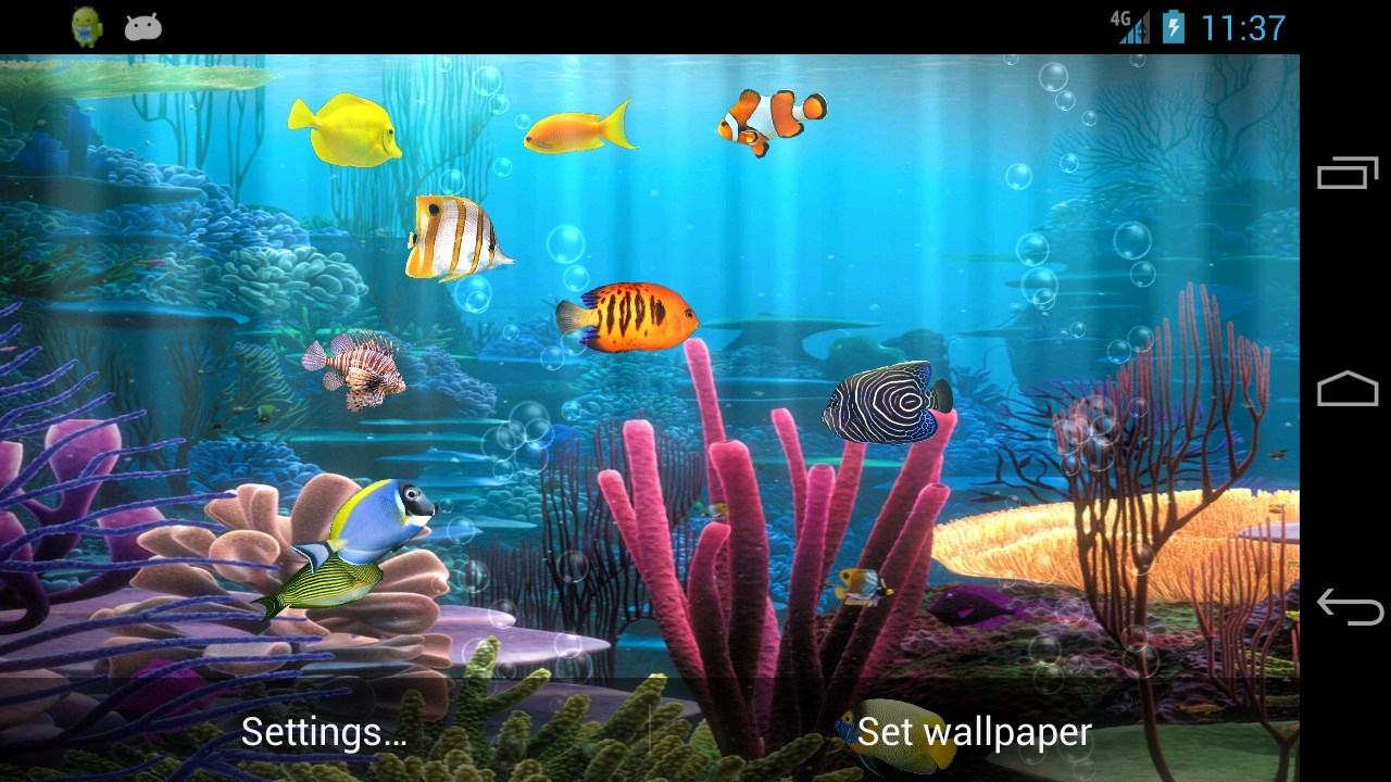 beautiful live wallpaper simulating fish swimming in the aquarium 1280x720