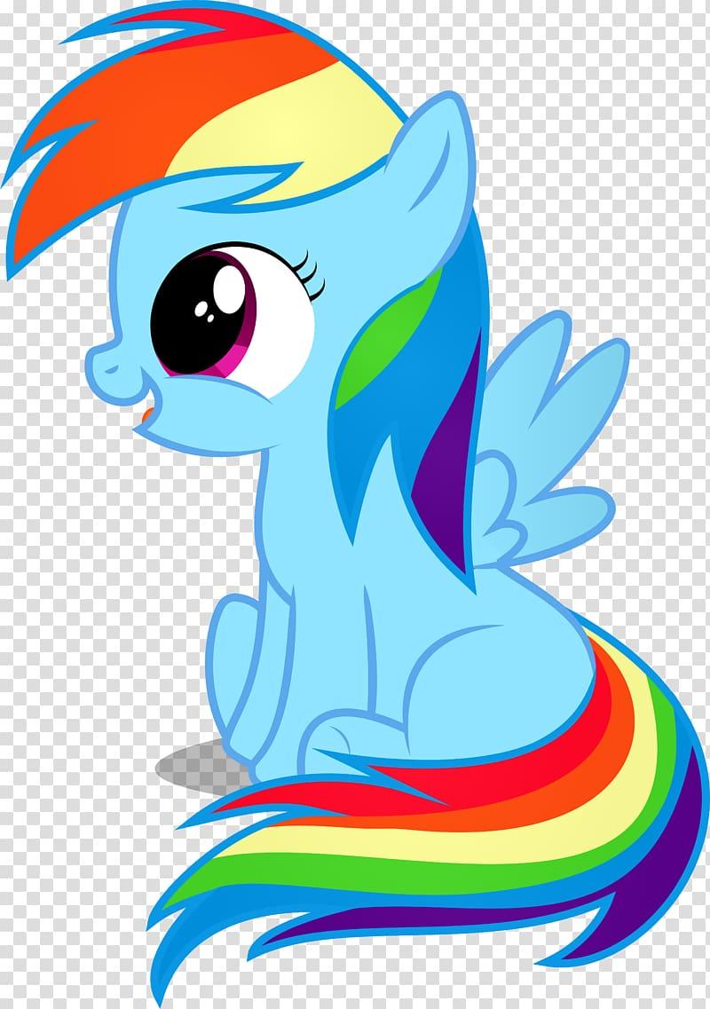 My Little Pony Friendship Is Magic fandom Rainbow Dash Konik 800x1137