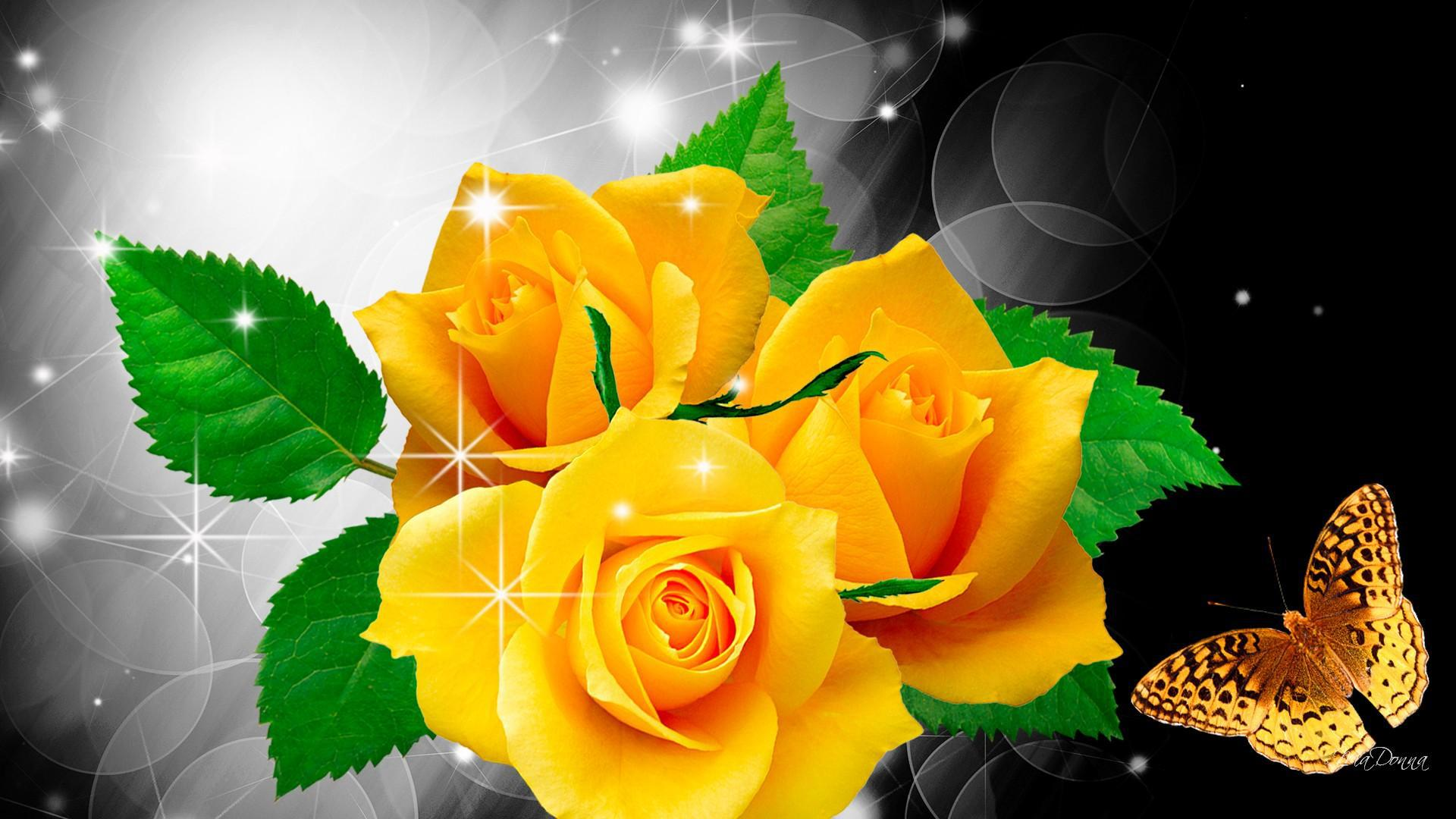 Hd wallpaper yellow rose - Yellow Roses And Butterfly Wallpapers And Images Wallpapers