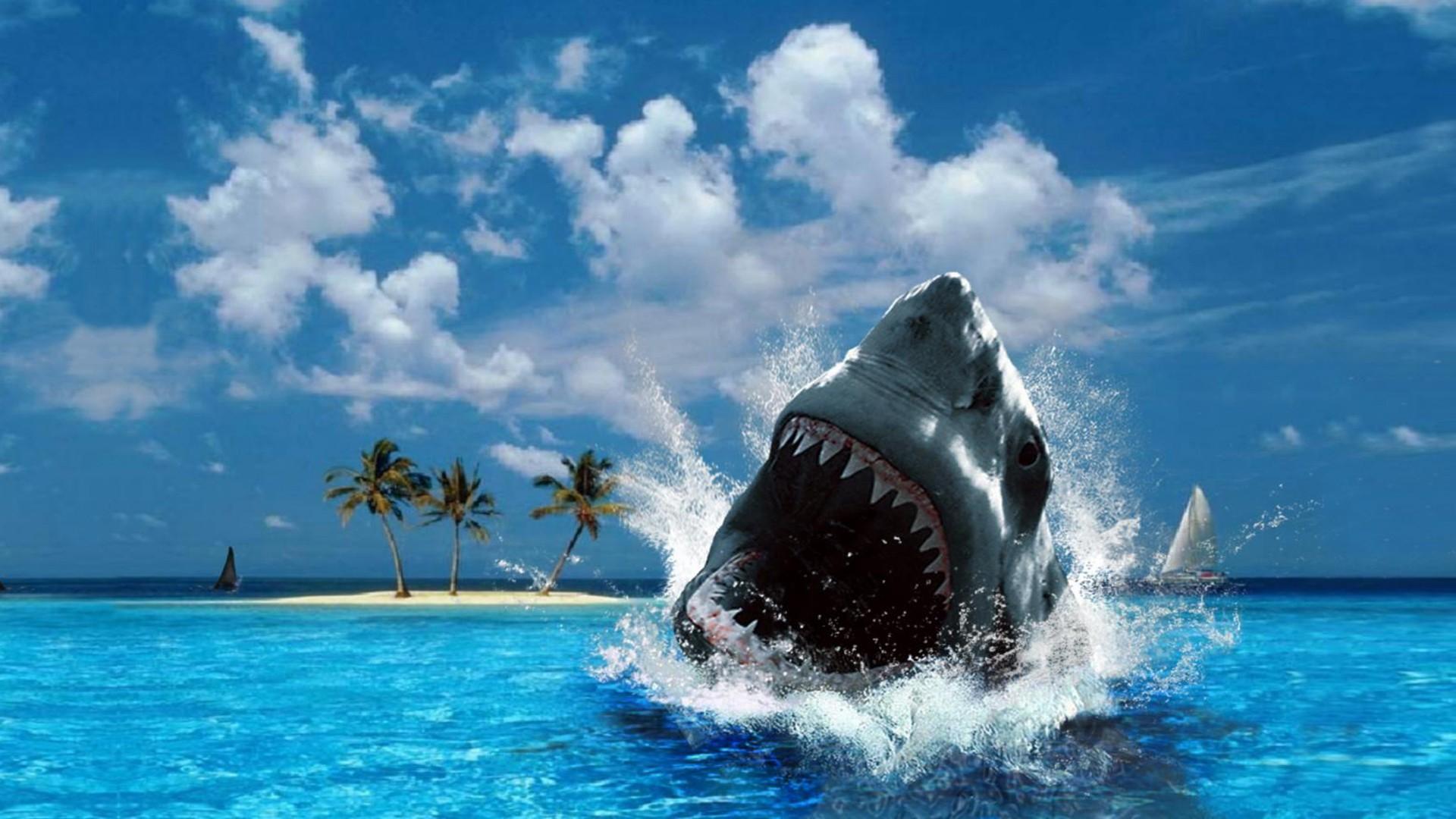 Живые обои на рабочий стол для windows 7 акулы