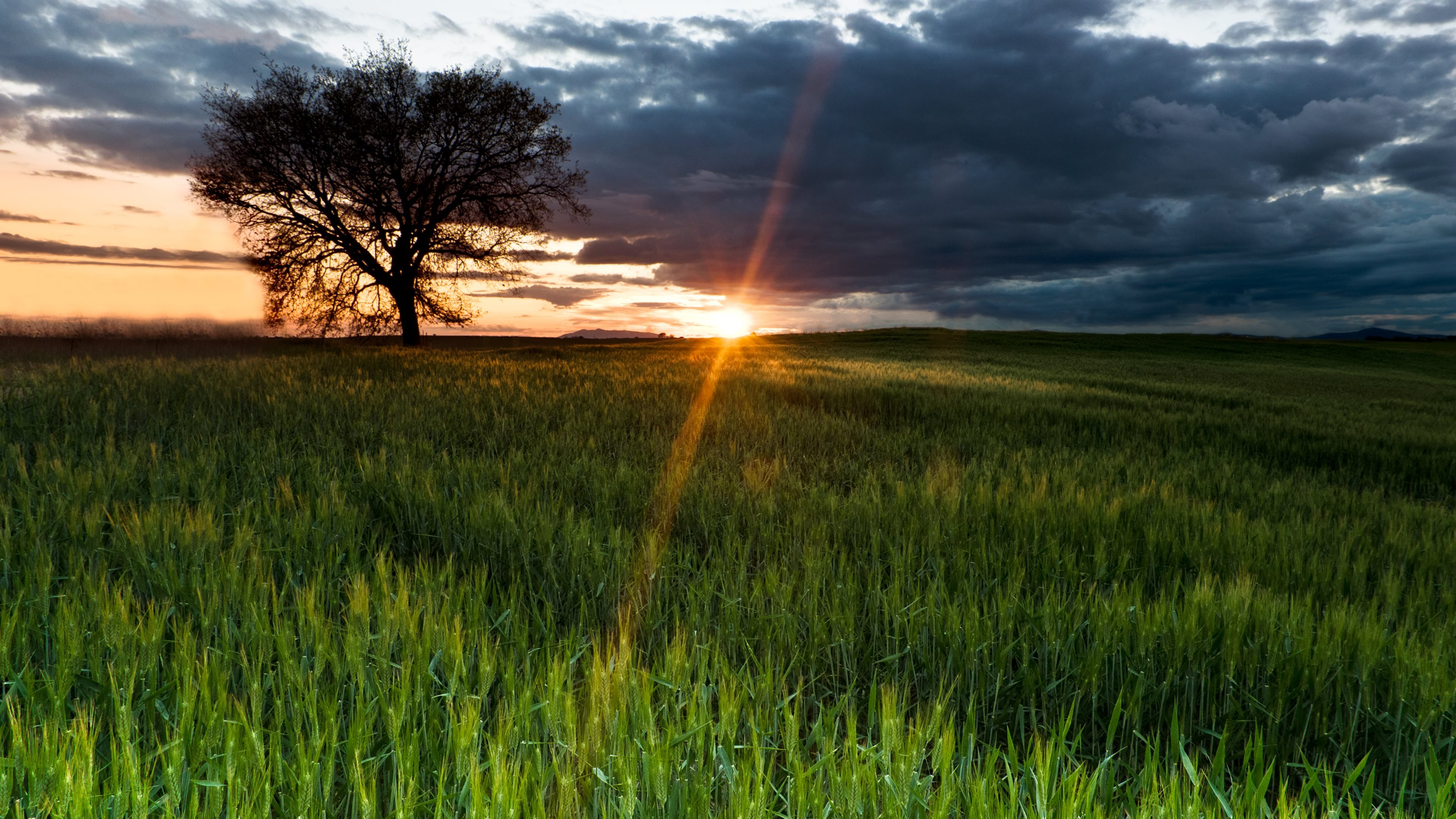 4K Sunshine Gallery HD Wallpaper Wallpapers Photos Images 3840x2160