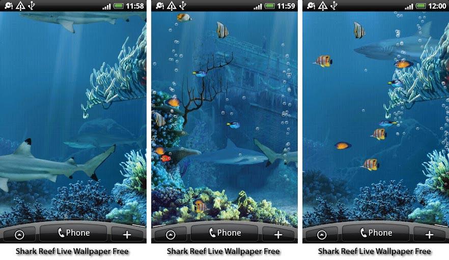 aquarium fish live wallpapers android shark reef live wallpaper free 882x512