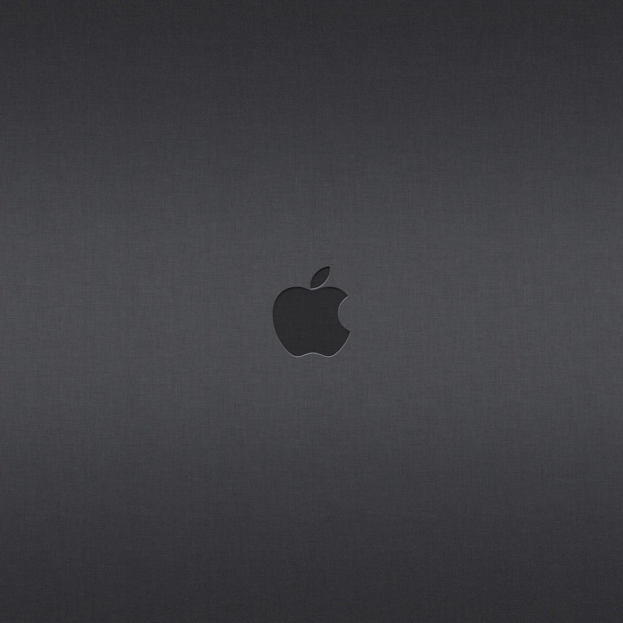 iPad Wallpapers Apple LOGO 015   Apple New iPad iPad 3 iPad 4 2048x2048
