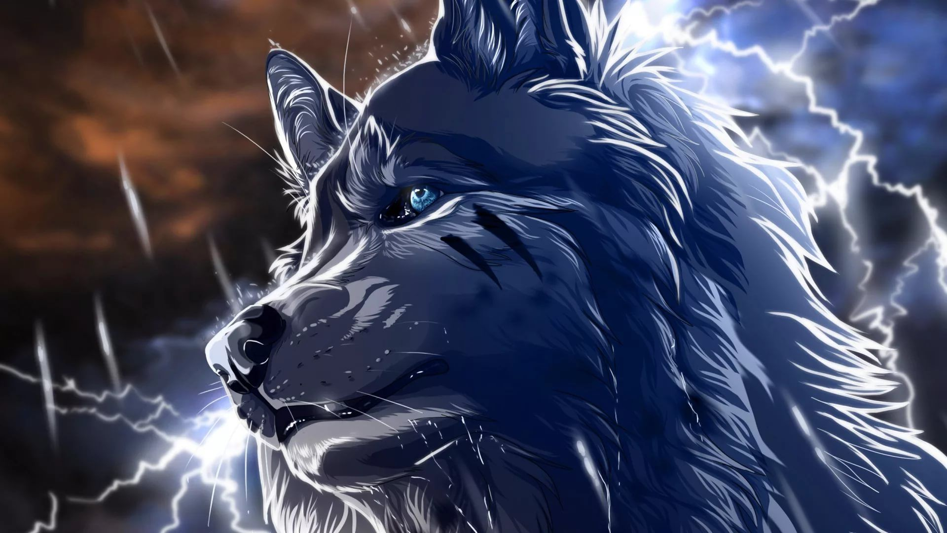 Cool Wolf Wallpapers 31 images   WallpaperBoat 1920x1080