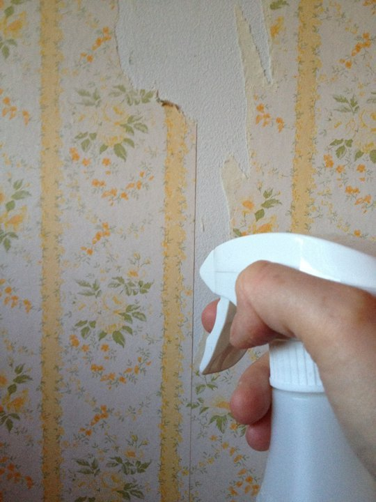 Easy All Natural Wallpaper Removal Tip Use Vinegar and Hot Water 540x720