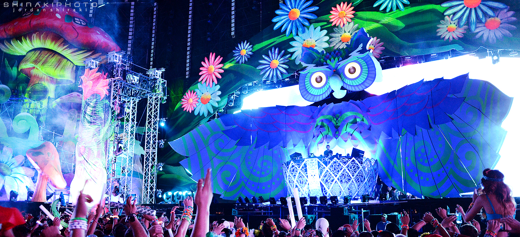 the electric daisy carnival essay The festivals around which it is centered — like electric zoo, ultra or electric  daisy carnival (edc) — are less so focused on specific djs than.