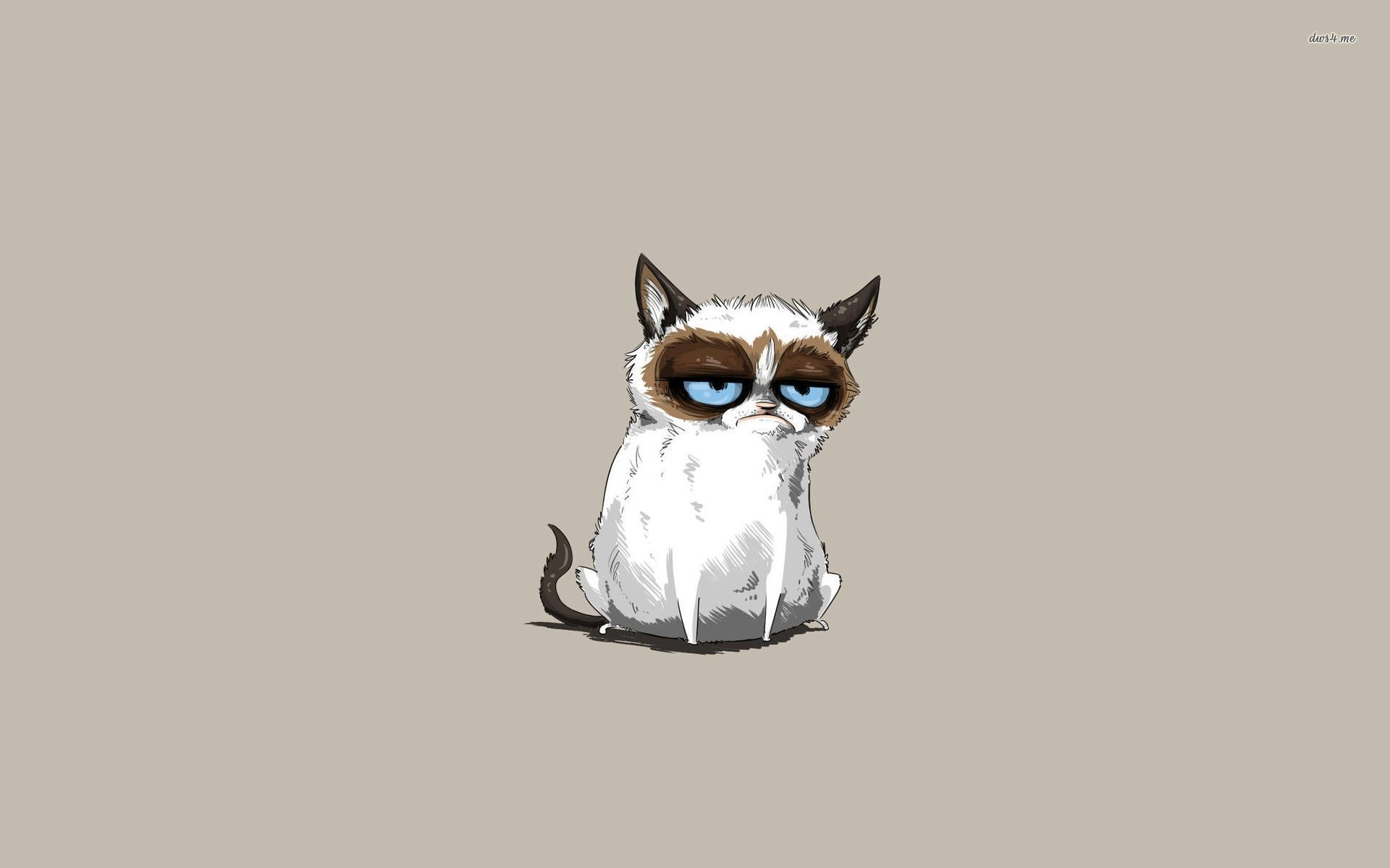 30251 grumpy cat 1920x1200 meme wallpaperjpg 1920x1200