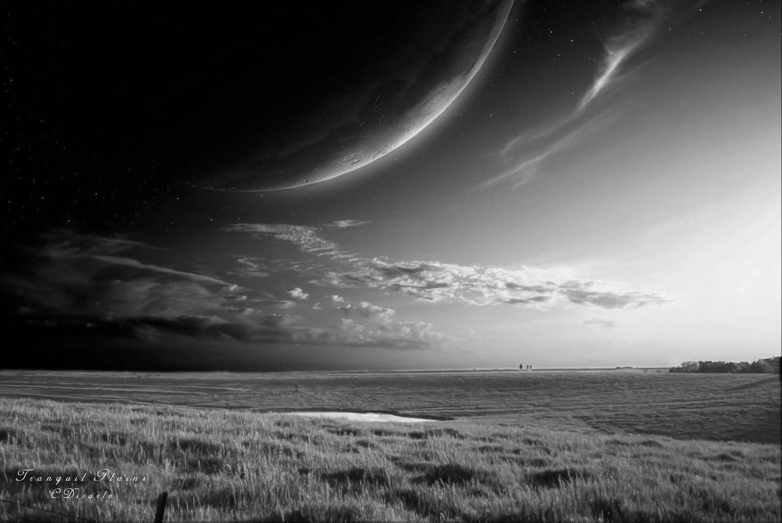 Free Download Black And White Wallpapers Hd Black And White Scenic