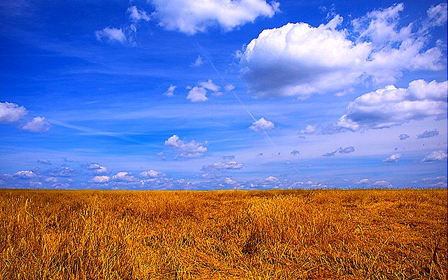 Summer Country Desktop Backgrounds Summer on the country hd 640x400