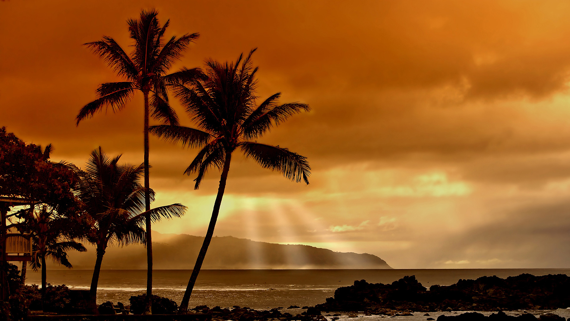 Beach Sunset With Palm Trees   Home Design Ideas Interior Design 1920x1080