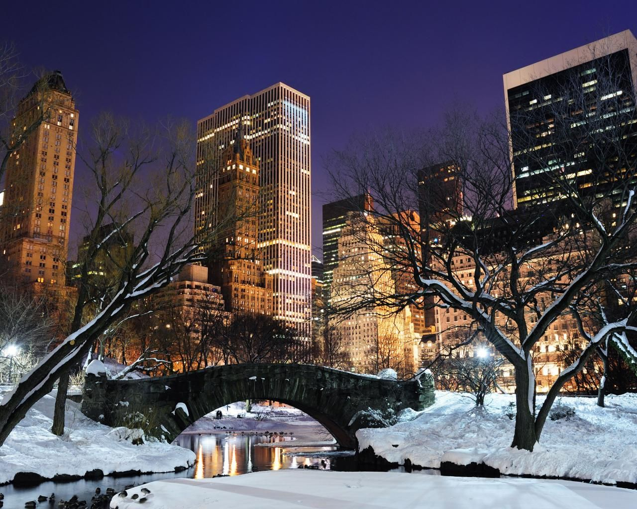 NYC At Night Central Park Central Park Winter Night Nyc Computer 1280x1024