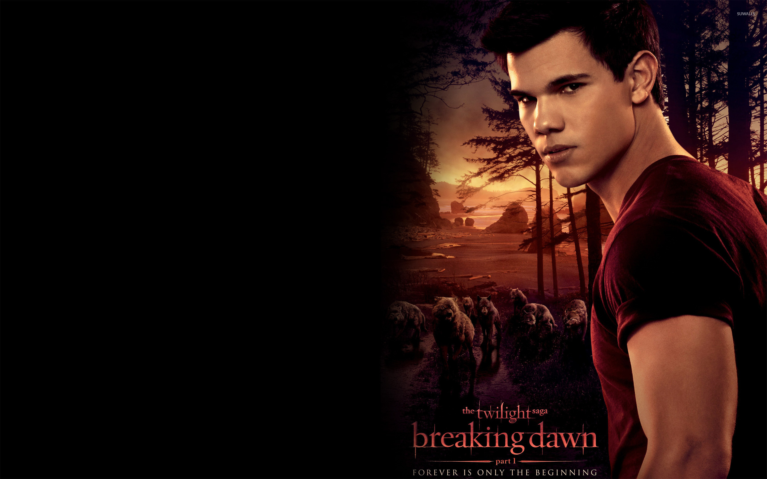 Jacob Black wallpaper   Movie wallpapers   9245 2560x1600