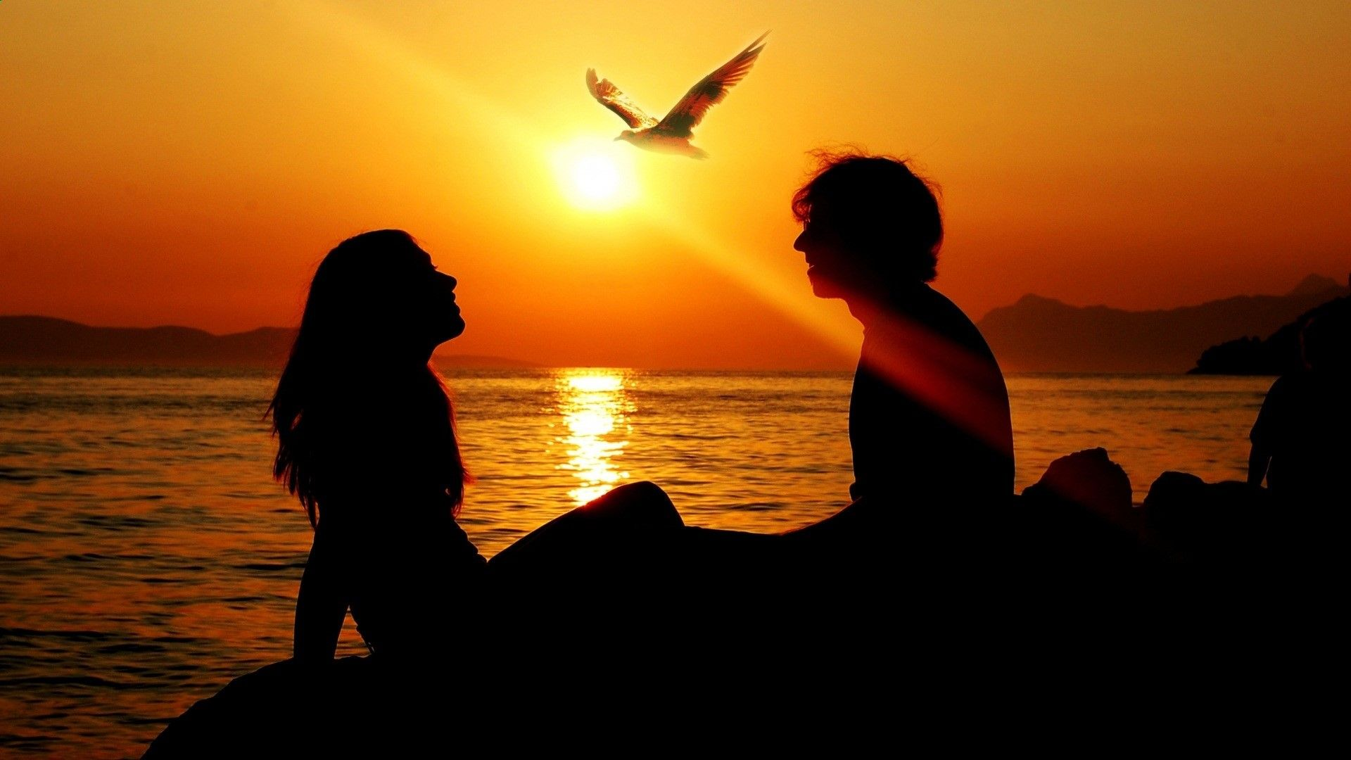 free pictures of couple at sunset romantic couple sunset 1920x1080