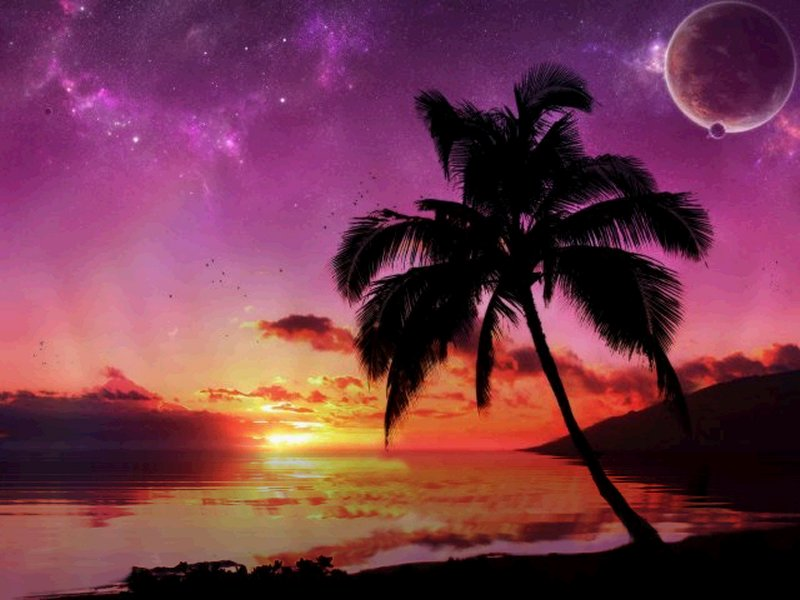 Valentines Wallpapers Beach At Night Wallpapers 800x600