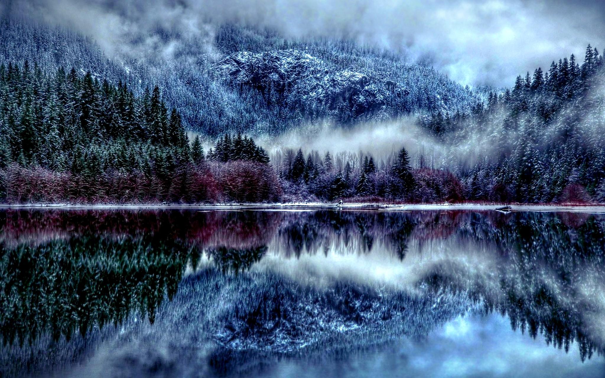 Winter Forest HD Wallpaper - Winter Season Desktop HD Wallpapers ...