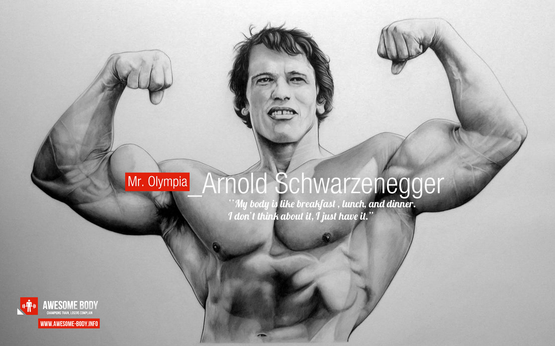 Arnold Schwarzenegger Motivational Poster Awesome Body 1920x1200